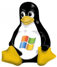 windows-on-linux